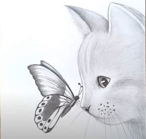 How to draw a cat and butterfly
