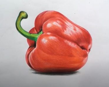 How to Draw a Bell Pepper Step by Step - How to draw Fruits Easy