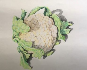 How to Draw a Cauliflower Step by Step - Vegetables Drawing