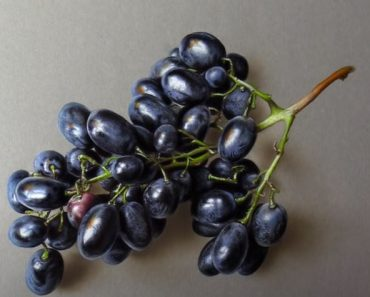 Realistic Grapes Drawing Step by Step - 3D Fruit Drawings with Pencil