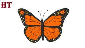 Simple Butterfly Drawing easy for beginners
