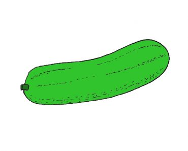 Cucumber drawing easy for beginners