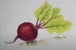 How to Draw a Beetroot Step by Step - Vegetables Drawing