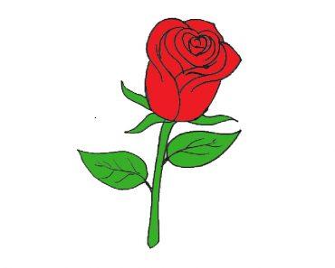Rose flower Drawing easy for beginners