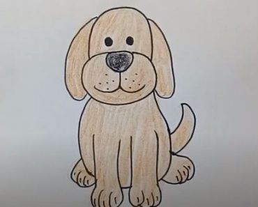 Simple Dog Drawing Step by Step - How to draw a cartoon dog easy for beginners