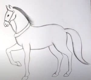 Simple horse drawing easy - How to draw a horse step by step