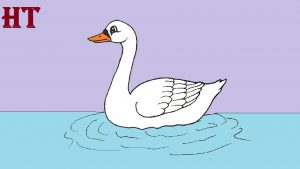 Swan Drawing easy for beginners