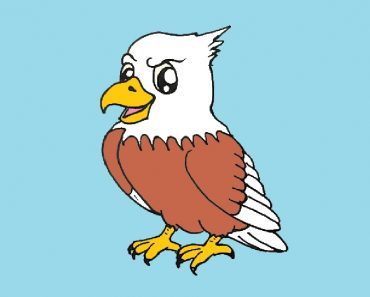 cute eagle drawing easy for beginners