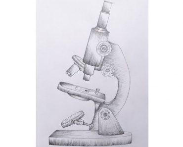 How to Draw a Microscope Step by Step