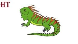 How to Draw an Iguana