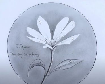 How to draw a Flower with dew drops
