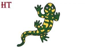How to Draw a Salamander